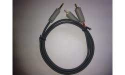Mini Stereo to Dual RCA Male Cable - 1 Meter